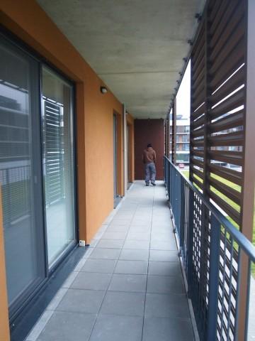 Balkón v Bratislave - Petržalke, Slnečnice