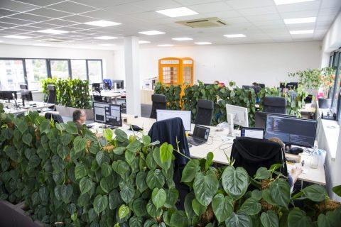 Interiérová zeleň KB Systems
